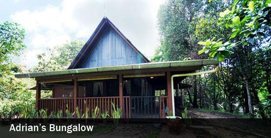 adrian bungalow